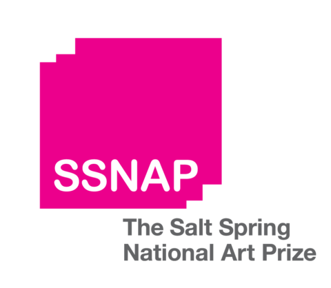 Call for Submissions: Salt Spring Art Prize